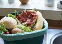 causas do desperdício de alimentos