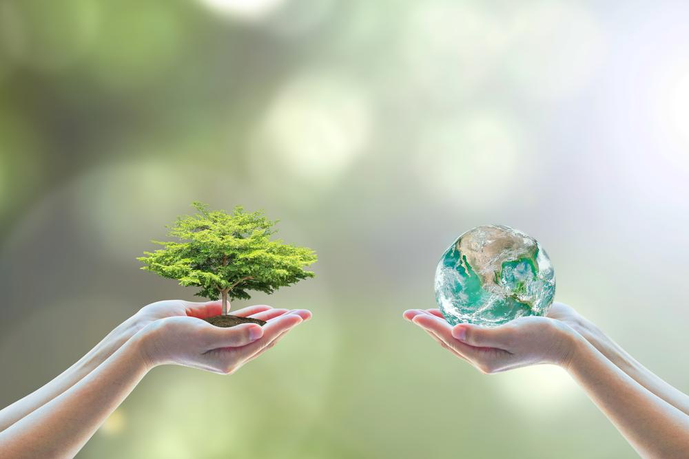 benefícios da sustentabilidade