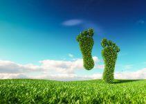 Pegada ecológica: O que é e o que representa?